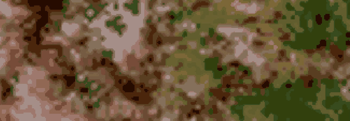 Fractal Camouflage
